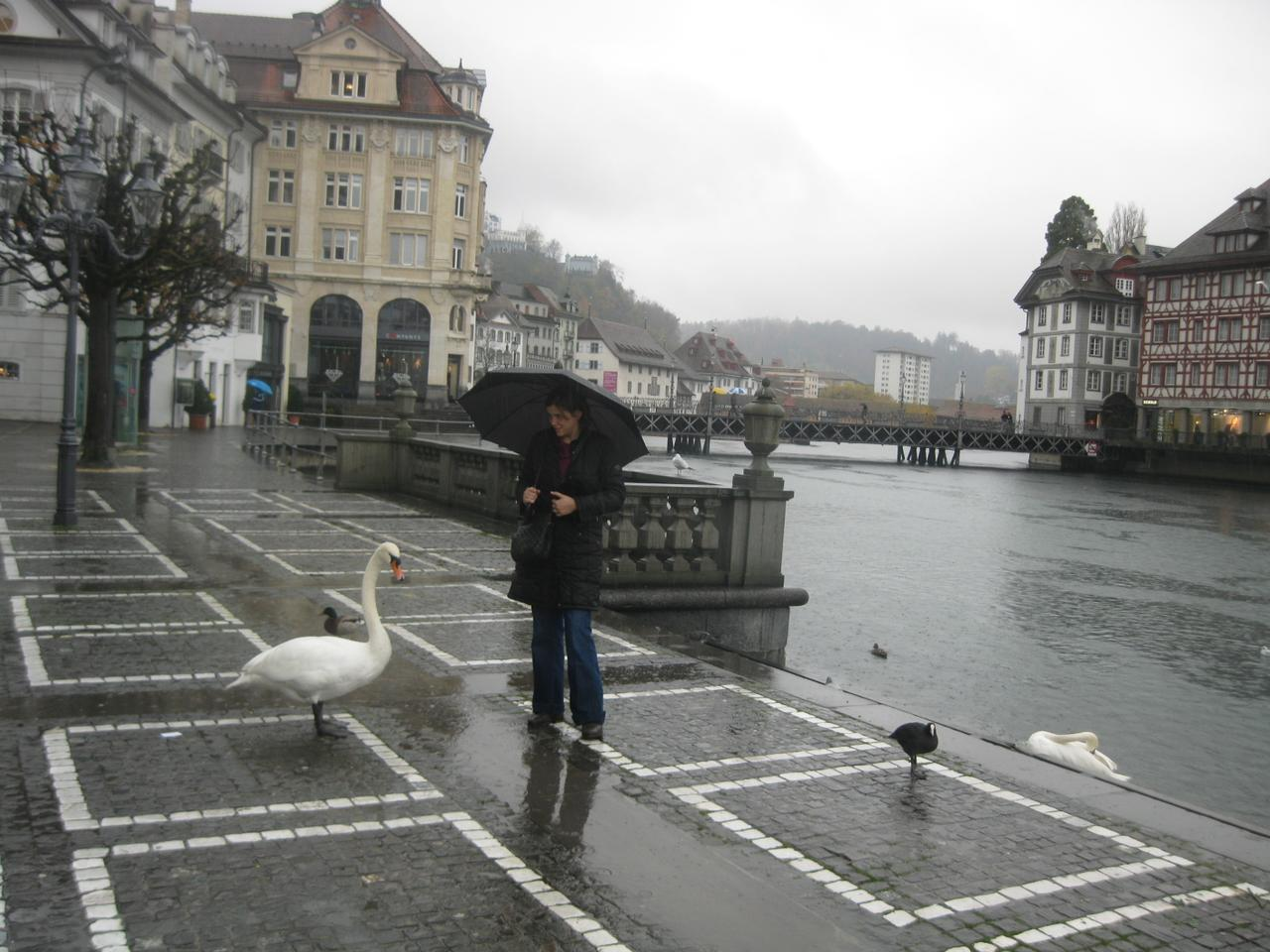 ../galleries/Luzern/IMG_5469.JPG